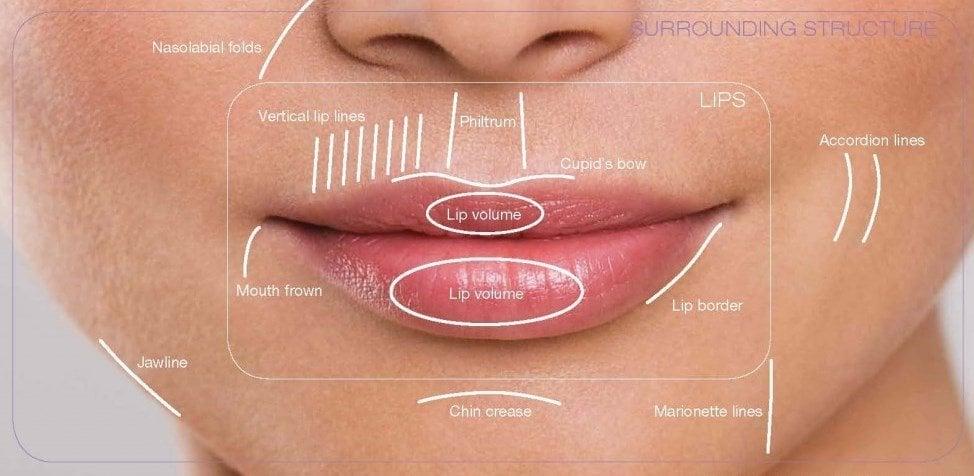 lip harmony