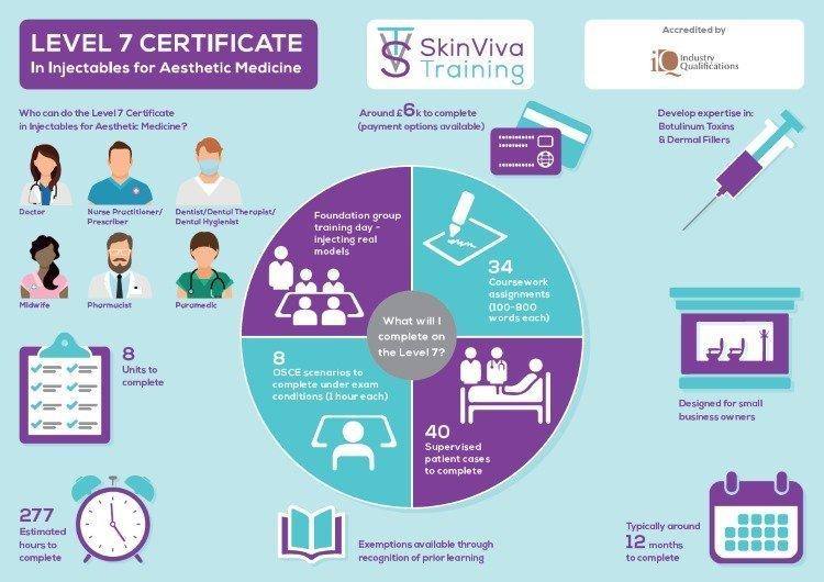 Level 7 infographic